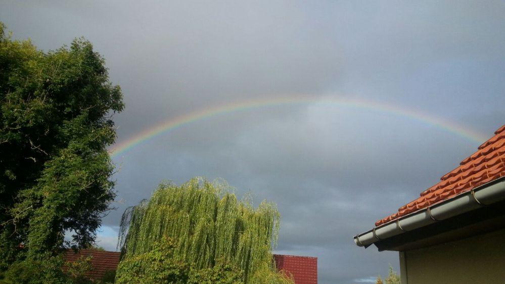bruchstedt_16_rainbow