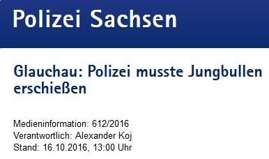 polizei_sachsen_16_10_16